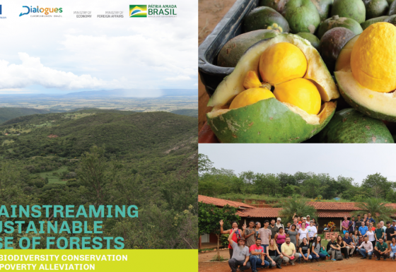 Mainstreaming Sustainable Use of Forests for Biodiversity Conservation and Poverty Alleviation in Brasil