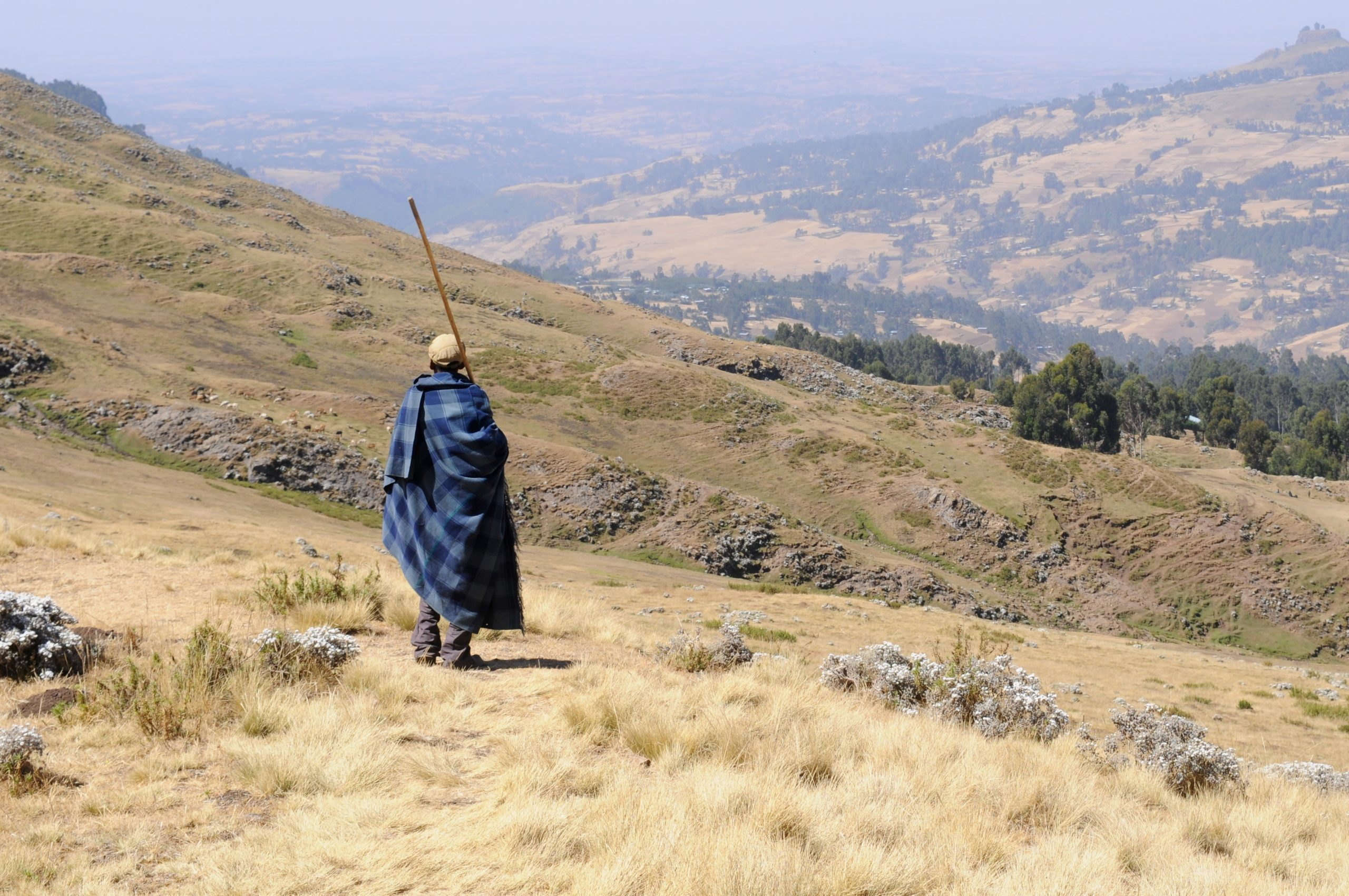 Payments for Ecosystem Services Strategic Plan in Ethiopia