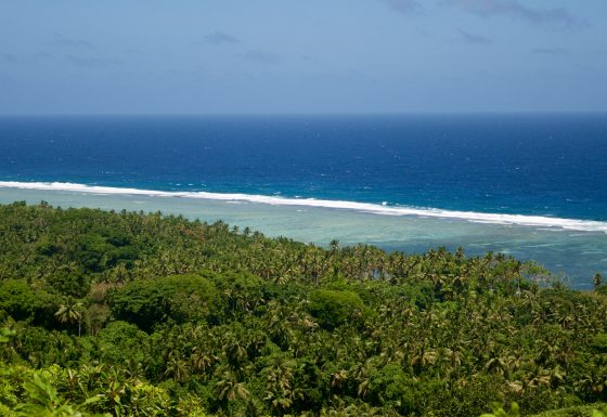 Integrating Biodiversity Safeguards and Conservation into Development in Palau GEF Project