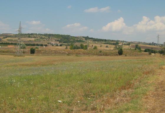 Environmental Report (2007) of the Grid Development National Plan, under the Strategic Environmental Assessment Procedure