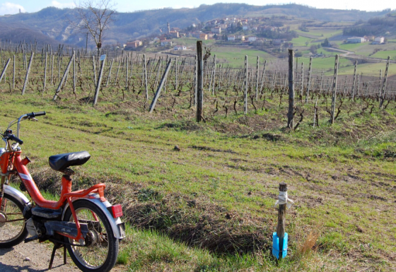 """Strategic Environmental Assessment of the Curone-Grue-Ossona """"Mountain Community"""" Plan"""